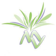cropped-MVDVlogoplantvierkantwebsitea.jpg